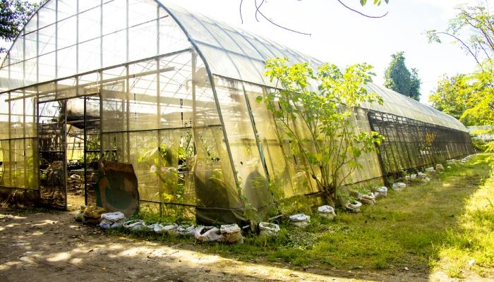 Bachelor of Agricultural Technology (BAT)
