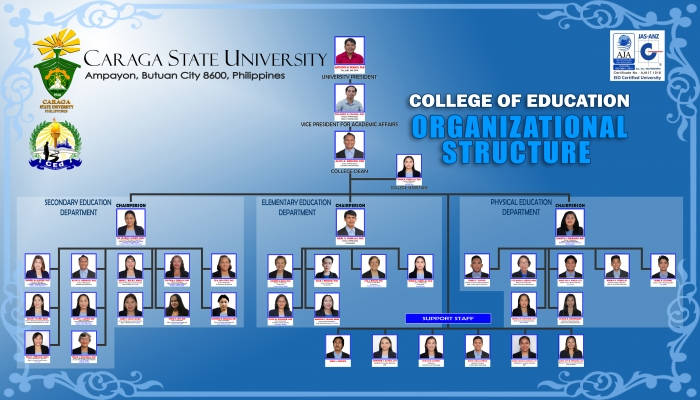 CEd Organizational Structure