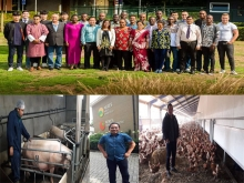 Agriculture Faculty in Netherlands for Pig Husbandry and Animal Feed Training